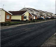 SS8178 : Change of house type, Anglesey Way, Nottage, Porthcawl by Jaggery