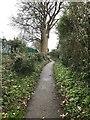 SJ6965 : Hannah's Walk, Middlewich by Jonathan Hutchins