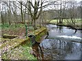 NY6128 : Weir and sluice, Crowdundle Beck, Acorn Bank by Christine Johnstone
