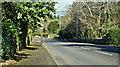 "J4078 : ""C"" road, Holywood (March 2017) by Albert Bridge"