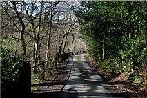 SE0927 : Simm Carr Lane by Chris Heaton