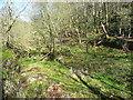 SD9829 : Drained millpond, Crimsworth Dean by Humphrey Bolton