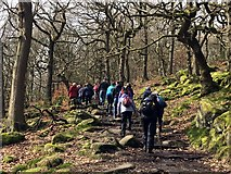 SK2579 : Stepping up to Bole Hill Quarry by Graham Hogg