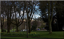 SP4974 : Park between Dunchurch Road and St George's Avenue by Robert Eva