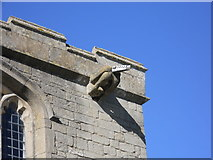TF1505 : Mooning gargoyle, St. Benedict's Church, Glinton by Paul Bryan