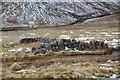 NH0814 : Drystone wall in An Caorann Mor by Jim Barton