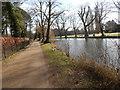 TL8782 : Spring Walk, Thetford by Hamish Griffin