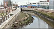 J3674 : The Connswater, Belfast - March 2017(5) by Albert Bridge