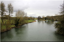 SP4408 : The Thames at Swinford by Nigel Mykura