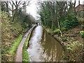 SJ8762 : Macclesfield Canal in Congleton by Jonathan Hutchins