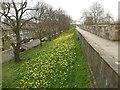 SE5951 : York City Walls by Graham Hogg