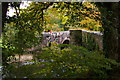 SX0963 : Respryn Bridge by Christopher Hilton