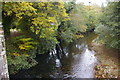 SX0963 : View upstream from Respryn Bridge by Christopher Hilton