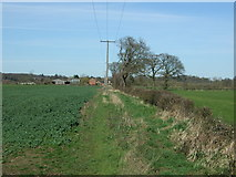 SK1515 : Crop field and hedgerow towards Overley Farm by JThomas