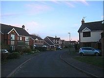 TQ2115 : The Hooks, Henfield by Simon Carey