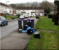 ST2896 : Wheelie bins and recycling boxes in  West Pontnewydd, Cwmbran by Jaggery