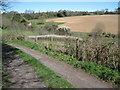 SU8214 : Footpath towards Chilgrove by Chris Wimbush