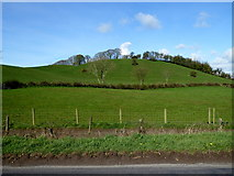 H5366 : Low hills, Beragh by Kenneth  Allen