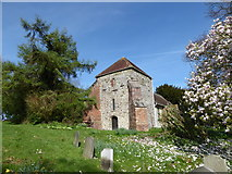 SU8518 : Spring in Bepton Churchyard (i) by Basher Eyre