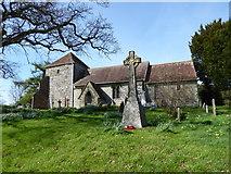 SU8518 : Spring in Bepton Churchyard (iv) by Basher Eyre