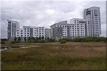 NT2677 : Halted development, Western Harbour by Richard Webb