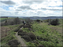 SO3283 : On the ramparts of Bury Ditches hillfort in spring by Jeremy Bolwell