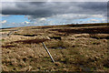 NY9511 : Pennine Way on Wytham Moor by Chris Heaton