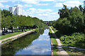 SK0405 : Southeast on the Wyrley and Essington Canal, Brownhills by Robin Stott