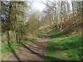 SK2872 : Path north of Robin Hood Farm by John Slater
