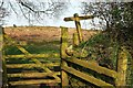 SX7488 : Gate onto Butterdon Down by Derek Harper