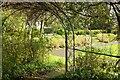 SX9265 : Tessier Gardens by Derek Harper
