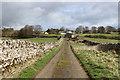 NY9813 : Access Lane from Swinholme Farm by Chris Heaton