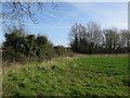 TG0140 : Field near Langham by Hugh Venables