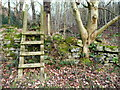 SE0427 : Ladder stile on FP183, Warley, Halifax by Humphrey Bolton