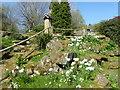 TQ5137 : Rockery in the gardens of Burrswood Hospital by Marathon