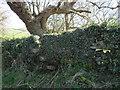 SD7964 : Stone stile in Craven Bank Lane by John S Turner
