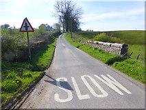 H3063 : Small bridge along St Dympnas Road by Kenneth  Allen