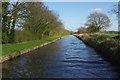 SJ5446 : Llangollen Canal near Quoisley by Stephen McKay