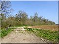 TL6349 : Public footpath east from Skippers Lane by Robin Webster