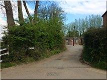 TQ8833 : Church Path, Tenterden by Chris Whippet