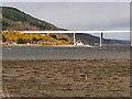 NH6547 : Beauly Firth, Shore at South Kessock by David Dixon