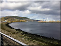 NH6546 : South Kessock, Mouth of River Ness by David Dixon