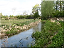 SU0196 : River Thames near Upper Mill Farm by David Purchase