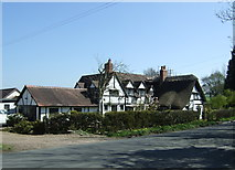 SP0058 : Stockwood Thatch by JThomas