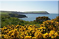 SN0339 : Looking west to Dinas Island by Christopher Hilton