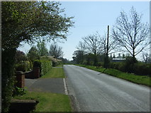 SP0058 : Stockwood Lane towards Little Inkberrow by JThomas