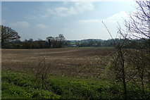 TM3569 : View to Peasenhall by Geographer