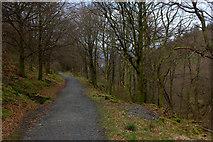 NY2427 : Path near Long Doors by Robert Eva