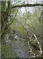 ST7759 : Monks' ponds by Neil Owen