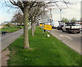 ST3037 : Tree-lined East Quay, Bridgwater by Jaggery